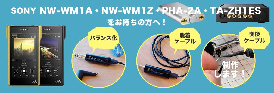 4.4mm5極プラグPentaconn (ペンタコン)